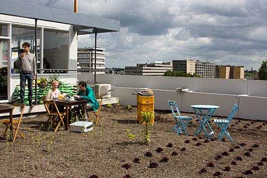 Rotterdam, Urban farming