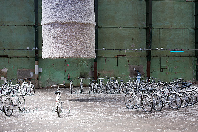 Rotterdam, Bikes with feathers