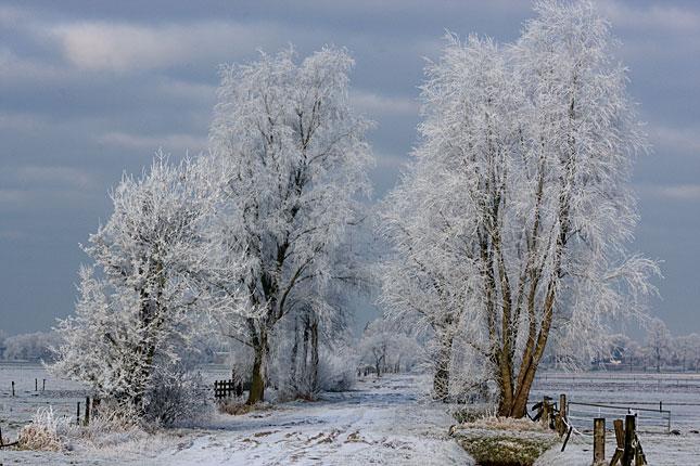 Rouveen, Winter