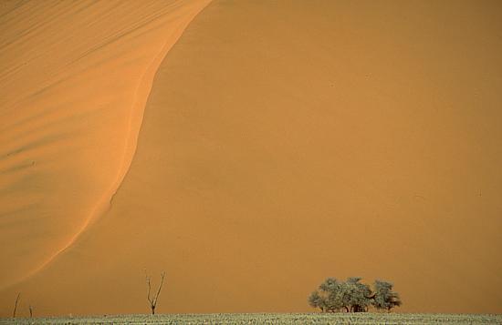 Sossusvlei, Dune