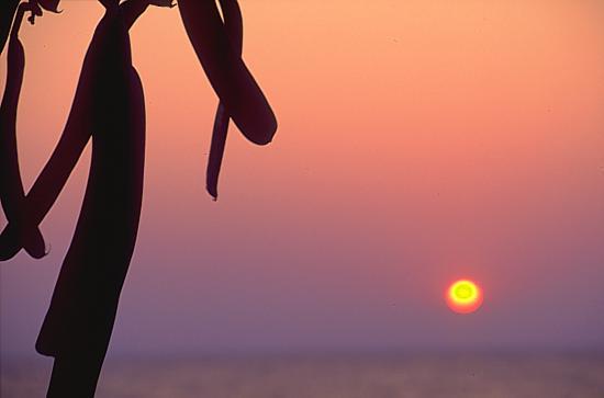 Salima, Lake Malawi sunrise