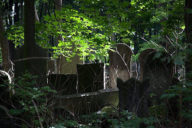 Warsaw, Jewish Cemetery