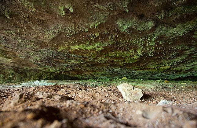 Les Eyzies, Grotte de Font de Gaume