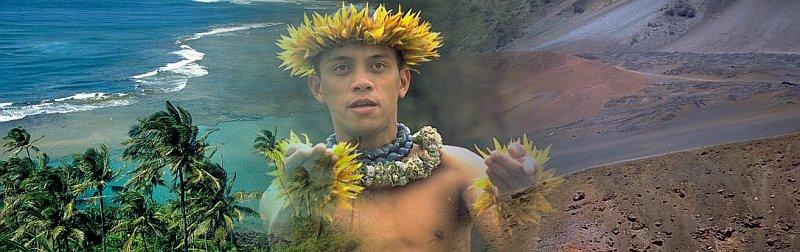 hawaiibanner