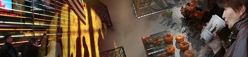 newyorkcitybanner