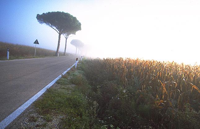 Torri, Tuscany Sunrise