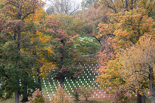 Arlington Cemetery, Autumn