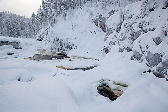Oulanka, River View