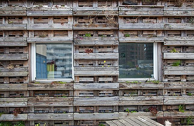 Aarhus, Urban Farming